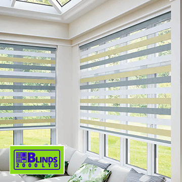 Vision blinds by Blinds 2000